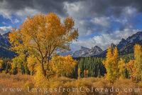 Autumn Gold and Precipice Peak 1