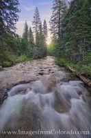 Buchanon Creek near Monarch Lake 1