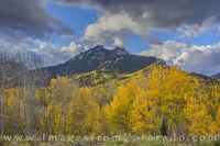 Cimarron Ridge Aspen Gold 1