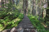 Winter Park, Colorado, Trail 1