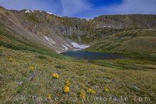 shelf lake, sunflowers, old man of the mountain, guanella pass, circque, hiking, alpine lakes, lake, wildflowers, morming