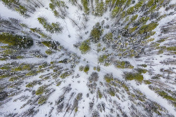 aerial, drone, hiking, winter park, snow, trail, blue sky, walk, snowshoe, cross country ski, winter, cold