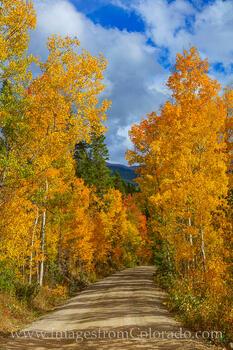 Autumn Colors of Winter Park 929-1
