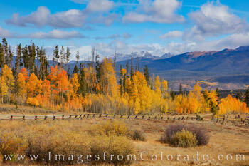 Autumn Colors on a County Road near Fraser 930-1