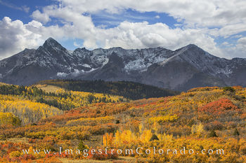 dallas divide, ridgway, ouray, san juans, san juan mountains, autumn color, fall colors, aspen trees