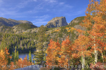 bear lake, flattop mountain, RMNP, morning october, aspen, orange, morning