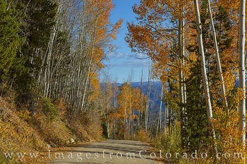 county road, fraser, winter park, autumn, fall, aspen, pine, morning