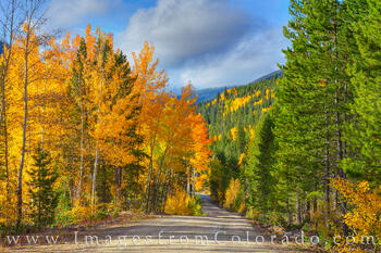 Where to Shoot Fall Colors in Winter Park
