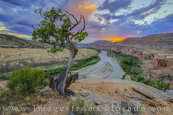 colorado river, Kokopelli trail, grand junction, horsethief canyon, hiking, western slope, mcinnis wilderness, evening