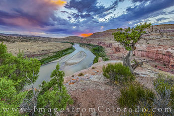 Ruby Horsethief Canyon Photos and Prints