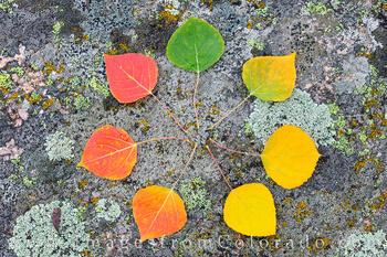 Autumn Colors in the San Juan Mountains 2021