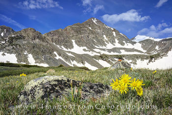 breckenridge, colorado wildflowers, crystal peak, crystal lake, colorado hikes, hiking trails, hikes, trailheads
