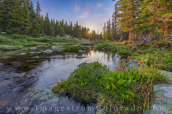 current creek, berthoud pass, grand county, sunrise, hike, morning, cold, july