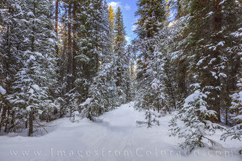 winter, hiking, snowshoeing, byer peak, trail, winter park, fraser, grand county, quiet, solitude, december, morning, pine, snow