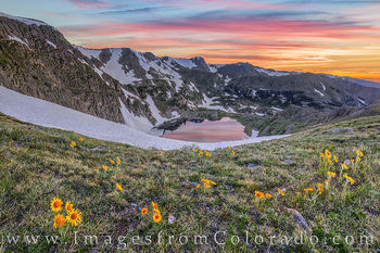 king lake, sunrise, rollins pass, corona pass, sunflowers, wildflowers, continental divide, prints for sale