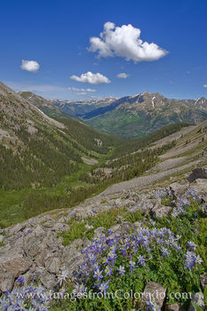 la plata peak, colorado summits, 14ers, 14ers photos, la plata images, colorado landscapes, colorado wildflowers, columbine photos, columbine images