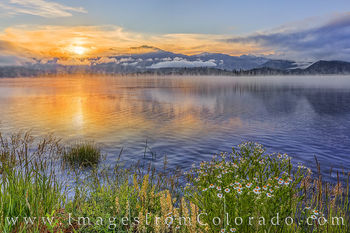 lake granby, grand lake, grand county, morning, fog, lake, rocky mountains, sunrise, wildflowers, daisies