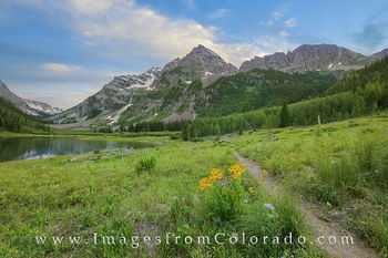 Maroon Bells Wildflowers from Crater Lake Summer Evening 1