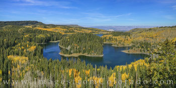 mesa lake, grand mesa, fall, autumn, pano, aspen, gold, yellow, october