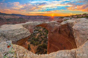 rattlesnake arch, rattlesnake canyon, mcinnis canyon, colorado national monument, grand junction, sunset, colorado arches, colorado canyon, arches, canyon, hiking, exploring, western colorado