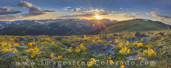 rocky mountain national park, colorado wildflowers, summer blooms, rocky mountains, trail ridge road, colorado sunset, mountain sunset, colorado landscapes, old man of the mountain, wildflowers, panor