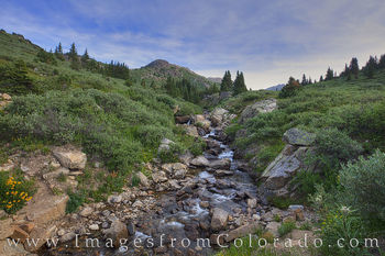Stream near Aspen, Colorado 1