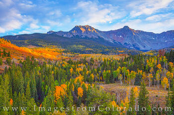 aspen, dallas divide, sneffels, fall, autumn, october, ridgway, CR 9