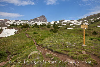 Uncompahgre Trail near Lake City 1