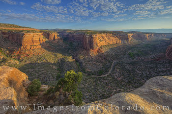 Ute canyon, rim rock road, Ute Canyon trail, colorado national monument, morning, canyon, cliffs, desert