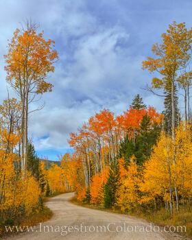 Winter Park Fall Colors 929-1