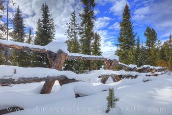 The Magic of Winter Snow - Winter Park, Colorado