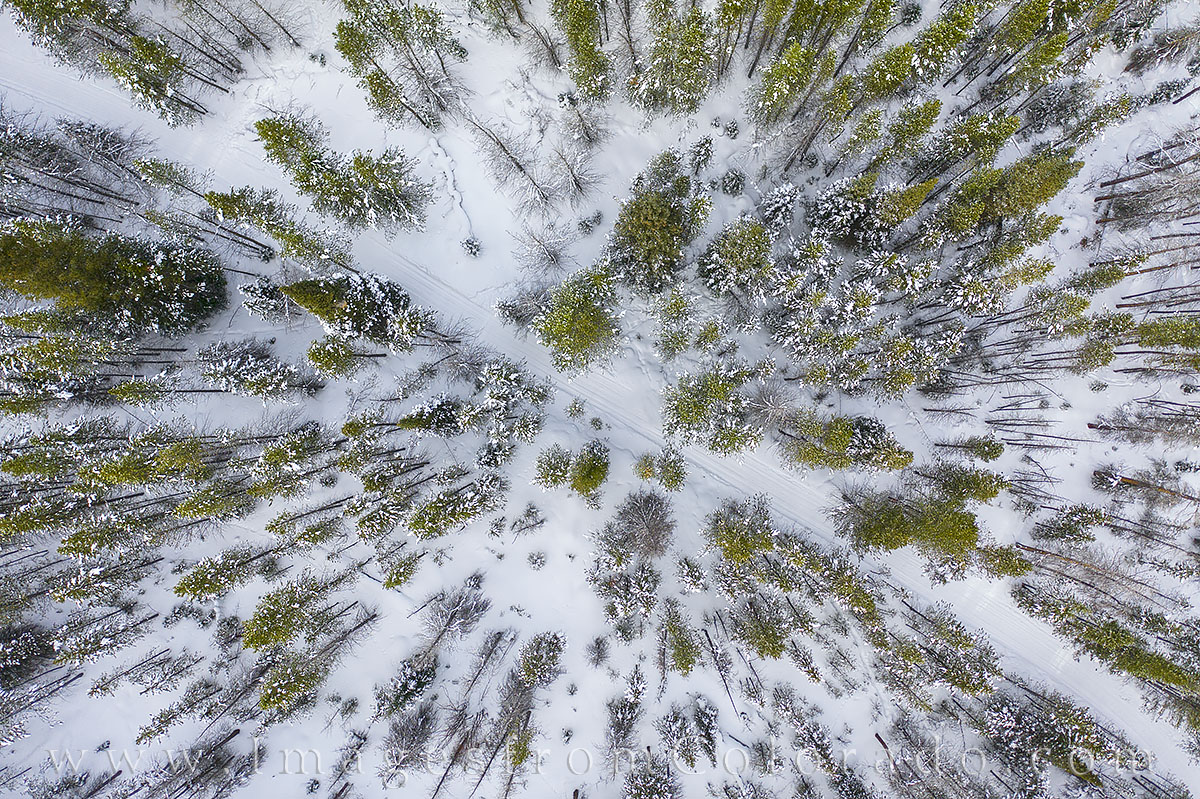 aerial, drone, hiking, winter park, snow, trail, blue sky, walk, snowshoe, cross country ski, winter, cold, photo