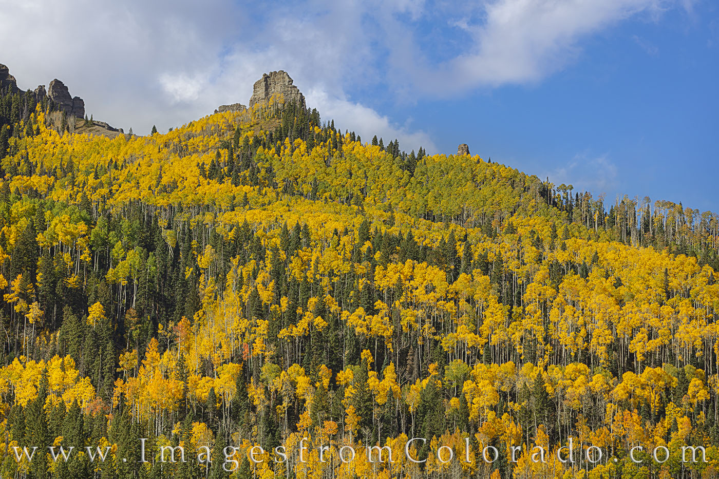 aspen, silver jack, gold, cimarron, autumn, fall, photo
