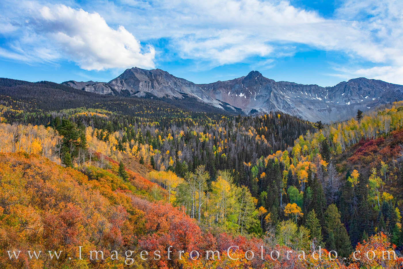 Reds, oranges, and golds fill the landscape along County Road 9 near the Dallas Divide. Not far from Ridgway and Ouray on the...