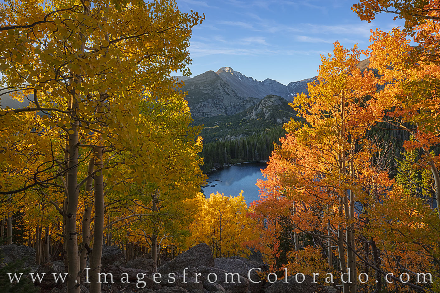 rocky mountain national park, rmnp, aspen, bear lake, autumn, colorado fall, colorado aspen, fall colors, autumn colors, colorado images, colrado autumn, photo