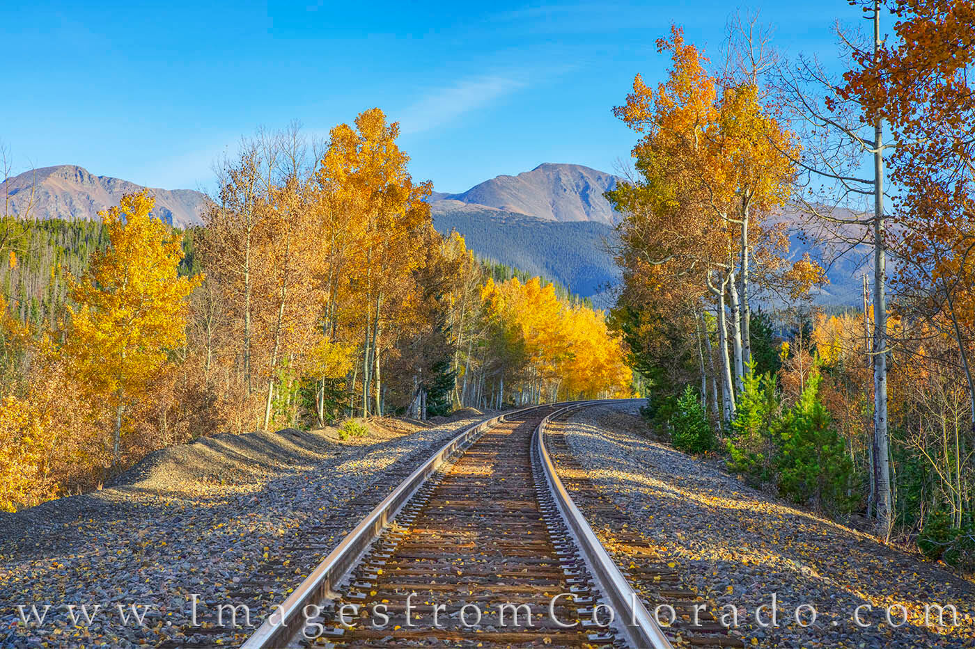 Along the train tracks that run behind the resort town of Winter Park, Colorado, aspen show off their fall colors on a crisp...