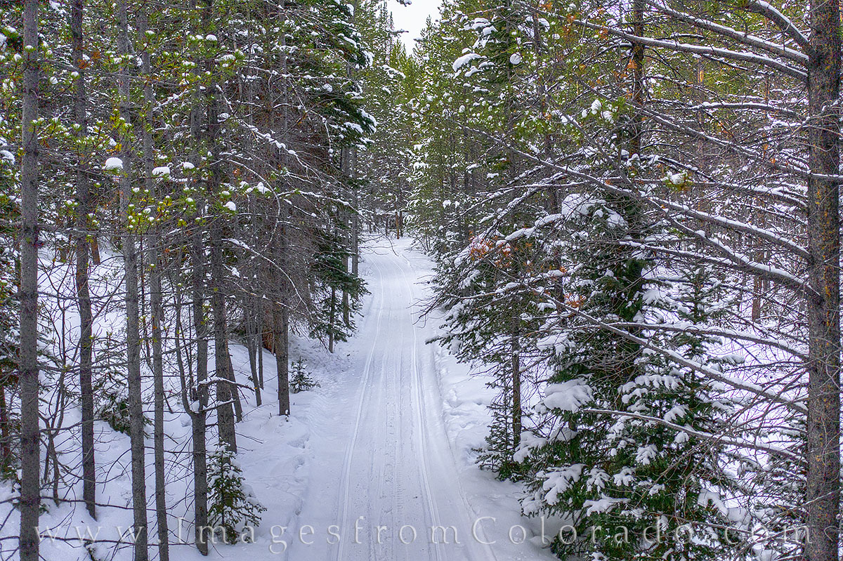 blue sky trail, winter park, trails, path, hiking, snowshoe, cross-country ski, snow, winter, december, photo