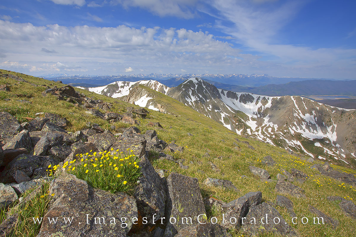 Byers peak, fraser, wildflower photos, byers peak images, fraser valley, Colorado hiking, Colorado trails, photo