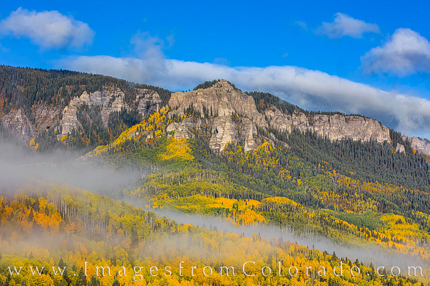 On a cold October morning, fog was draped in layers across the golden aspen in the Cimarron Valley not far from Silver Jack Reservoir...