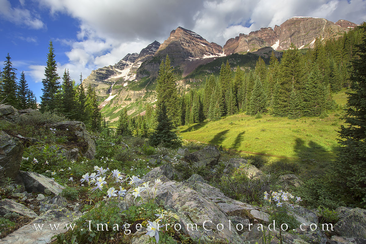 Columbine enjoy the morning light near Crater Lake. After photographing the Maroon Bells at sunrise, I made my way along the...