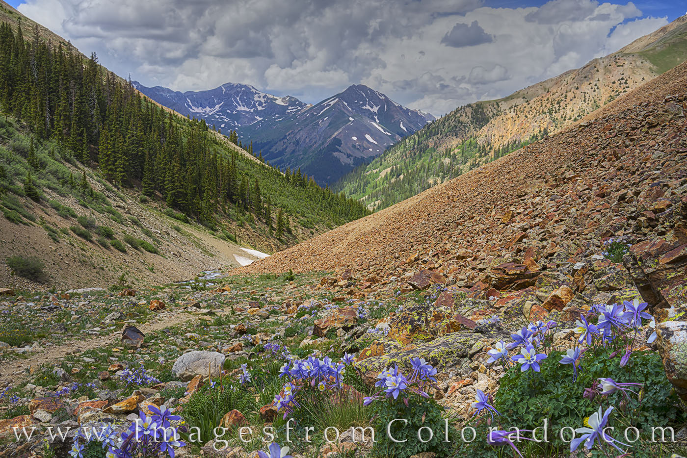 The Silver Creek Trail near Lake City, Colorado, leads to two of Colorado's most beautiful 14,000' peaks - Redcloud and Sunshine...