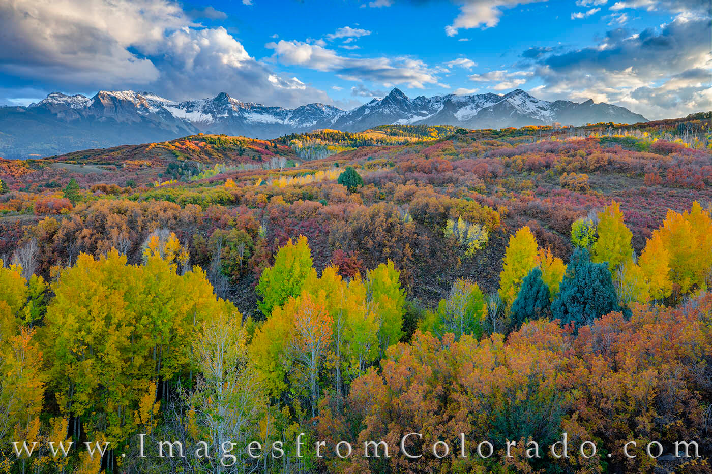 The Dallas Divide is one of the iconic fall scenes in the San Juans. Each Autumn, photographers and sightseers flock to this...