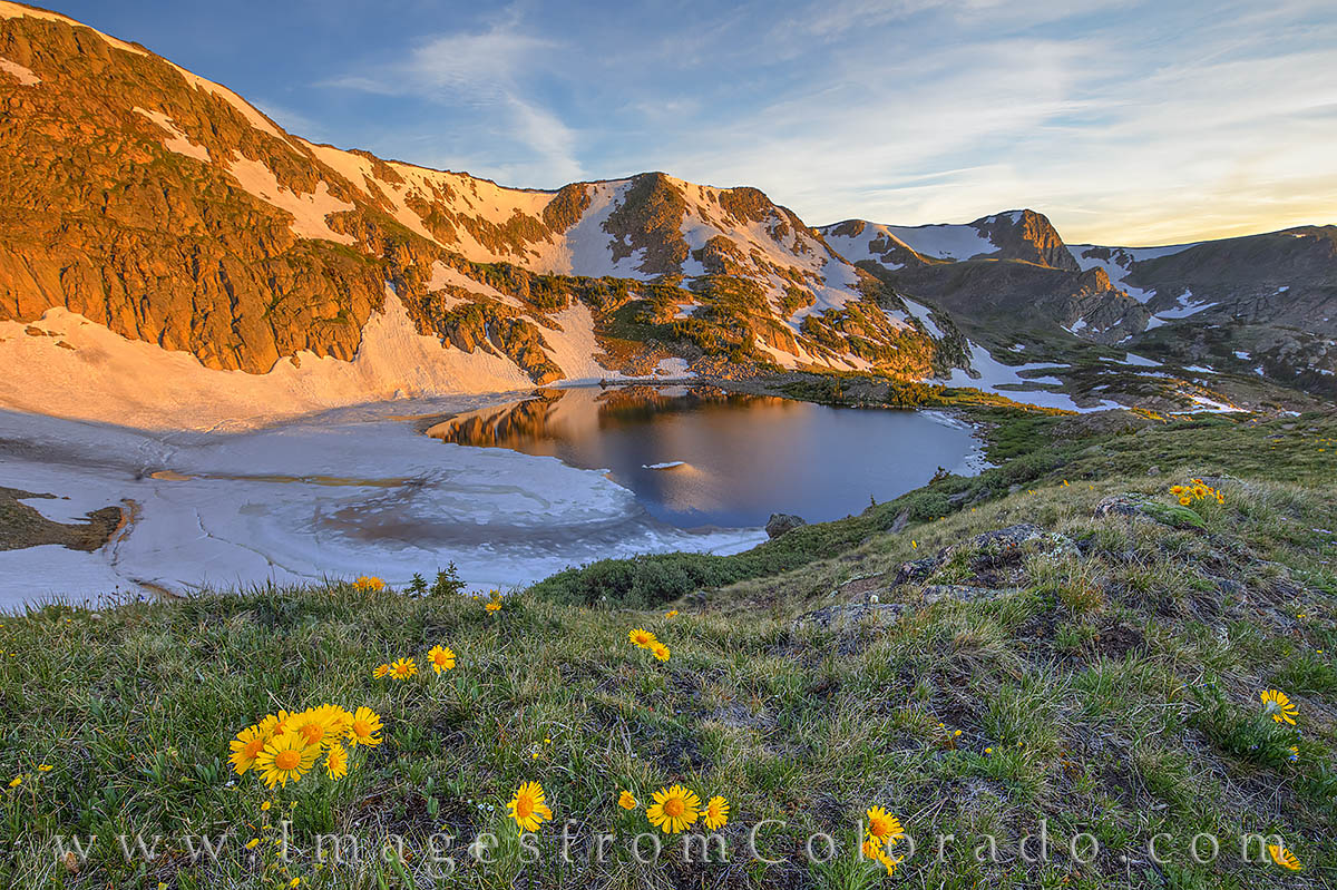 king lake, sunrise, morning, sunflowers, continental divide, rollins pass, photo