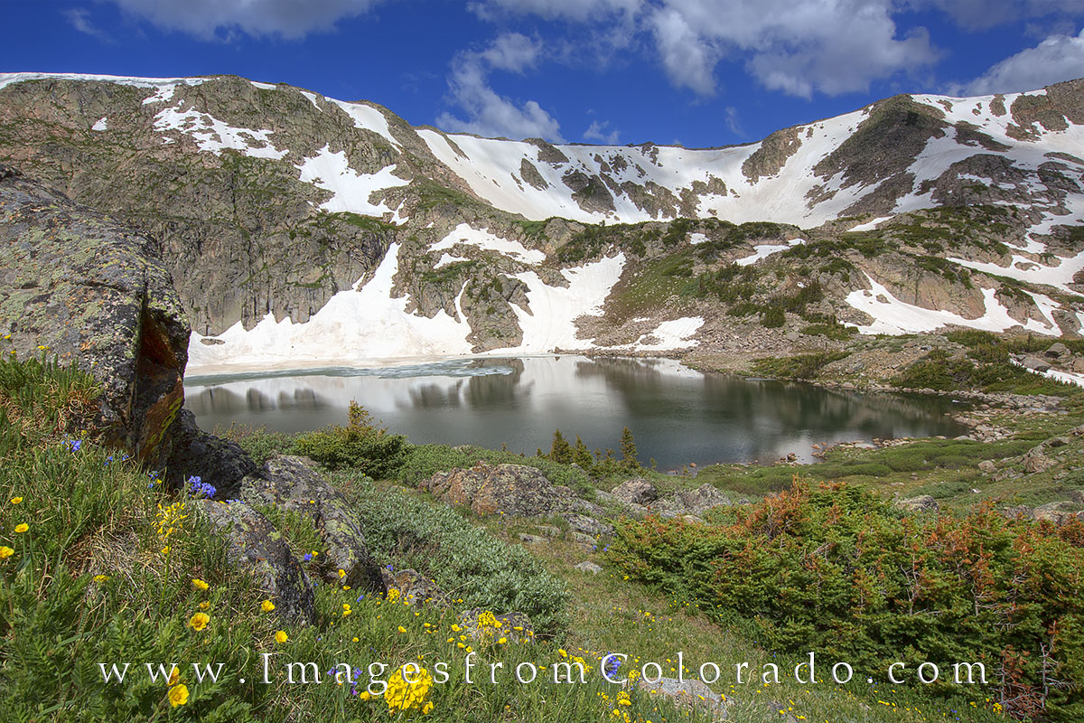 king lake, winter park, rollins pass images, continental divide images, colorado lake images, king lake photos, colorado wildflower photos, colorado wildflwers, photo