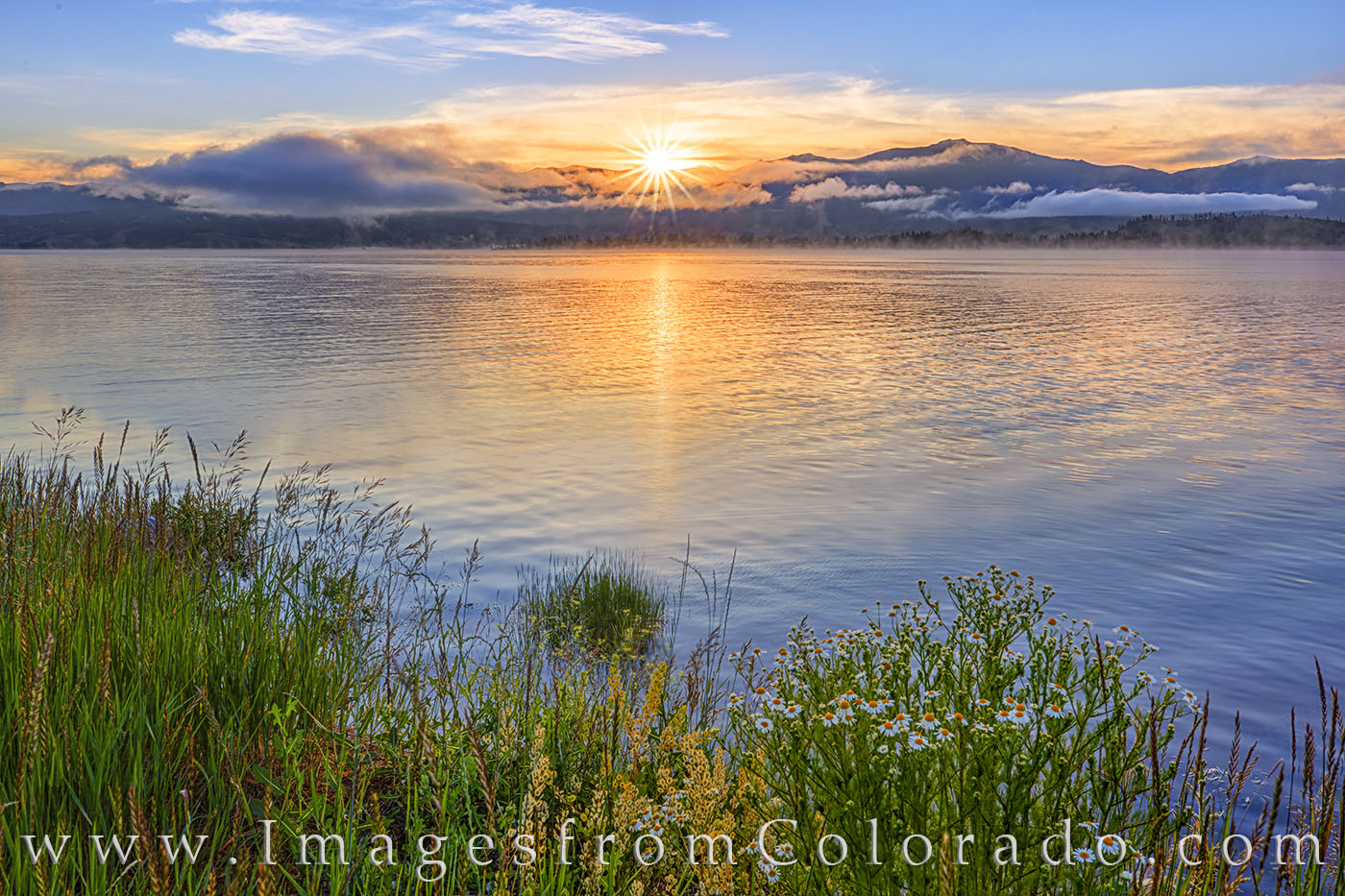 grand lake, lake granby, sunrise, wildflowers, grand county, highway 34, rocky mountains, lake, water, morning, photo