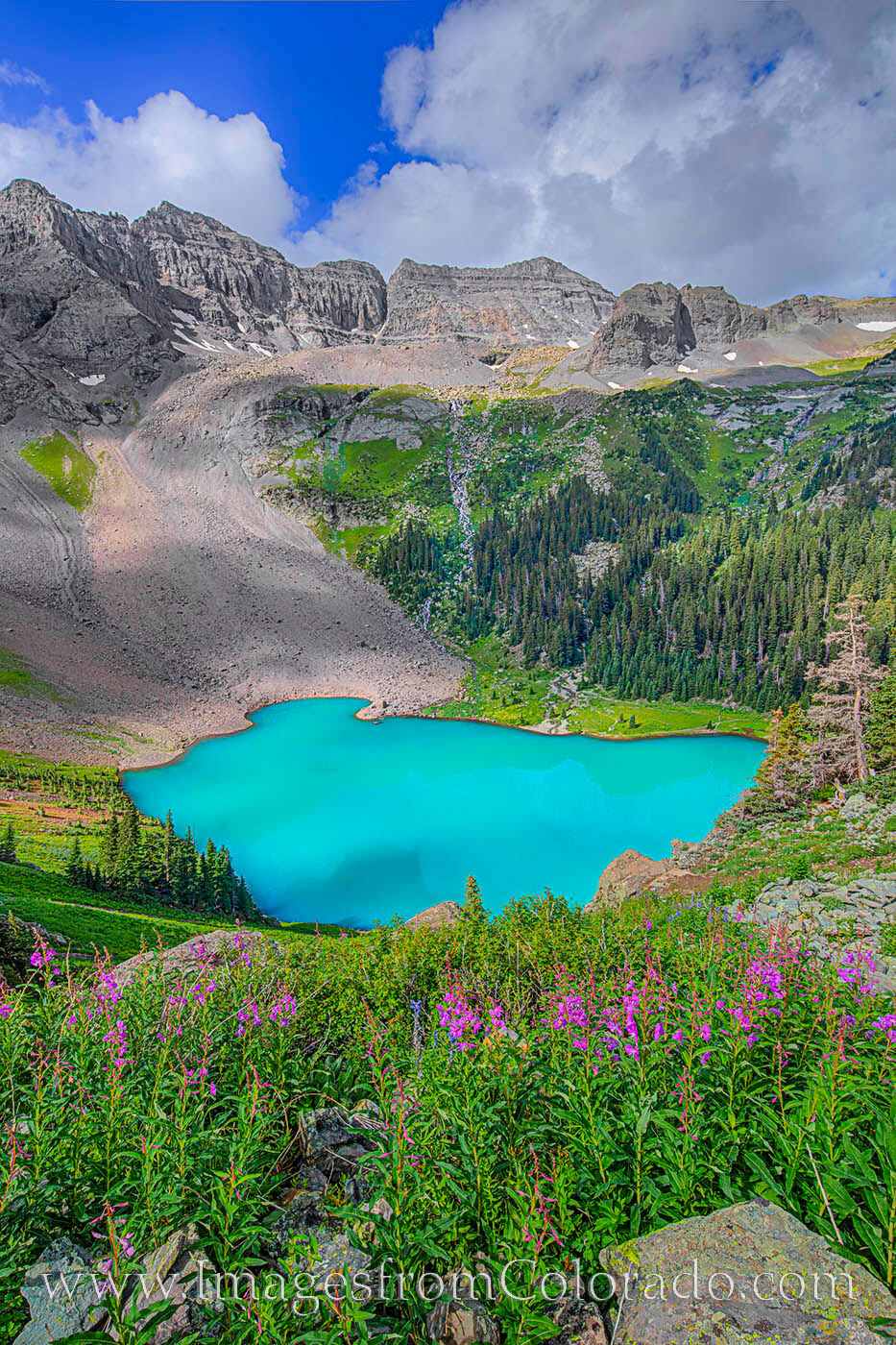 Fireweed fill the rocky crags above Lower Blue Lake in the San Juans not far from Ouray. The water was a beautiful turquoise...