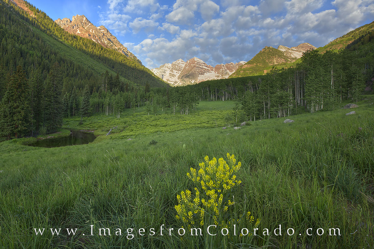 Soft clouds drive over the Maroon Bells on a summer morning. This image was taken downstream from Maroon Lake as I was heading...