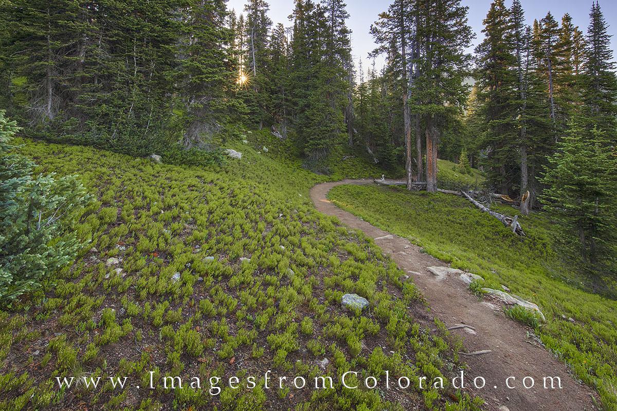 berthoud pass, continental divide trail, winter park, continental divide, highway 40, hiking, hiking colorado, hiking trails, berthoud pass trail, sunrise, summer, photo
