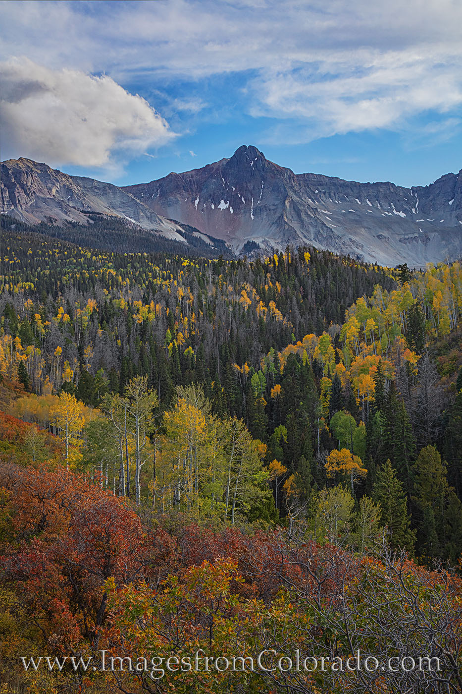sneffels, dallas divide, fall, autumn, october, aspen, ridgway, county road, photo