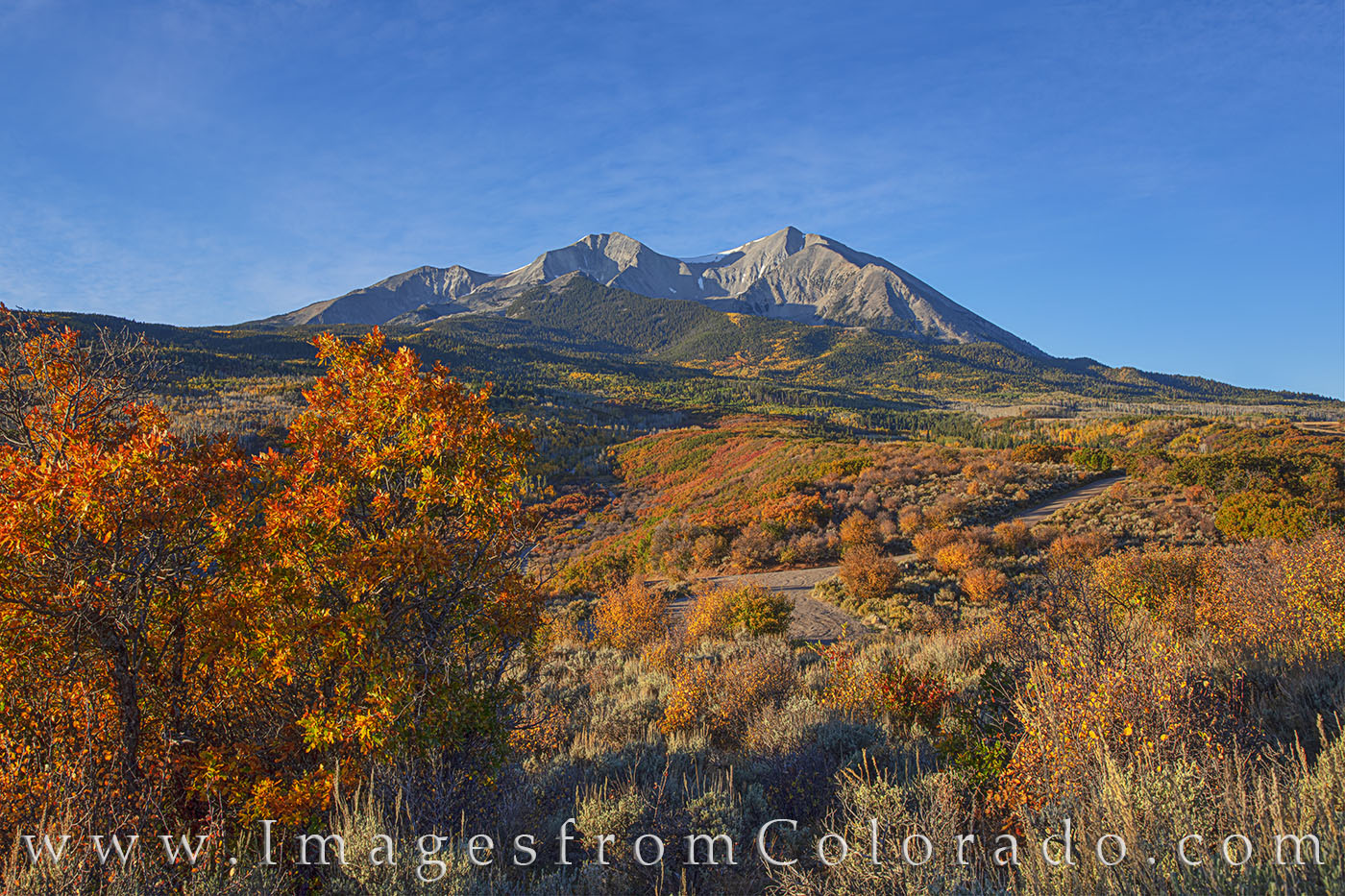 mount sopris, sopris, fall, autumn, morning, color, oak, aspen, carbondale, photo